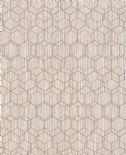 Dimensions Edward Van Vliet Wallpaper 219625 By BN Wallcoverings For Tektura